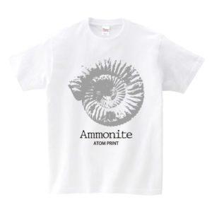 化石〈アンモナイト〉